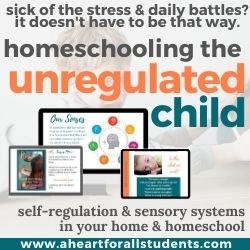 self-regulation and sensory systems homeschool